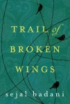A trail of broken wings