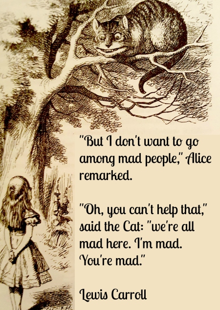 mad-quote